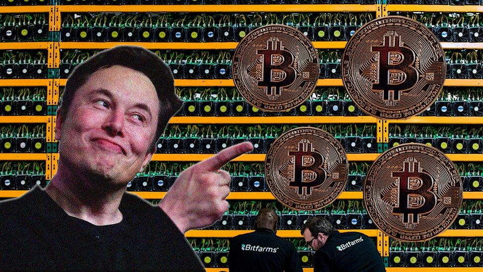 kodėl bitcoin rinkos avarijos kaip pridėti bitcoin apie metatrader 4