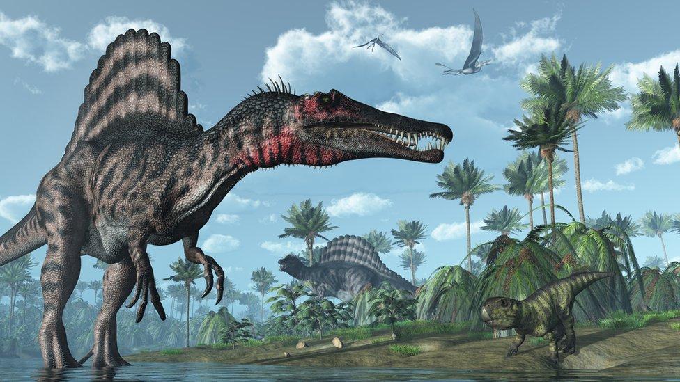 El Unico Y Peligroso Lugar En El Que Convivieron 3 De Los Dinosaurios Carnivoros Mas Grandes Que Habitaron La Tierra Bbc News Mundo Los dinosaurios son un grupo de saurópsidos que aparecieron durante el período triásico. el unico y peligroso lugar en el que convivieron 3 de los dinosaurios carnivoros mas grandes que habitaron la tierra bbc news mundo