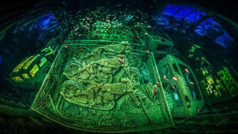 تصاویر: زیر آب حیرت انگیز دنیا