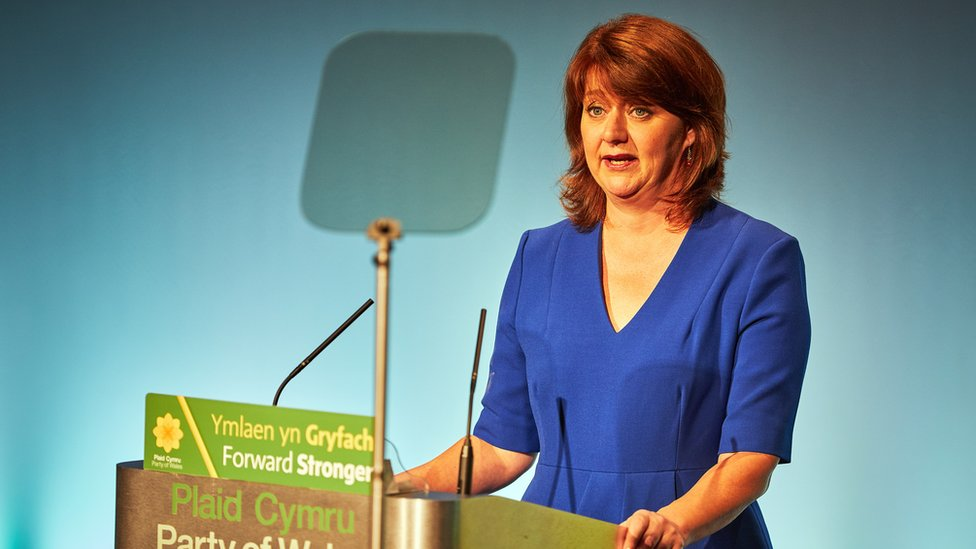 Stop anonymous attacks on me, Wood tells Plaid politicians