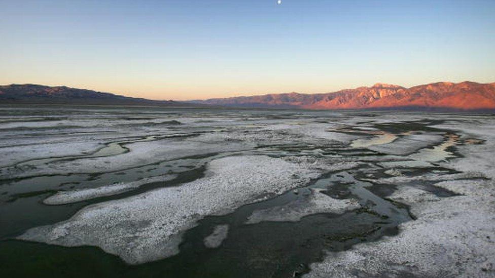 Un homeópata estadounidense estaba convencido de que la sal era el secreto de la vida.