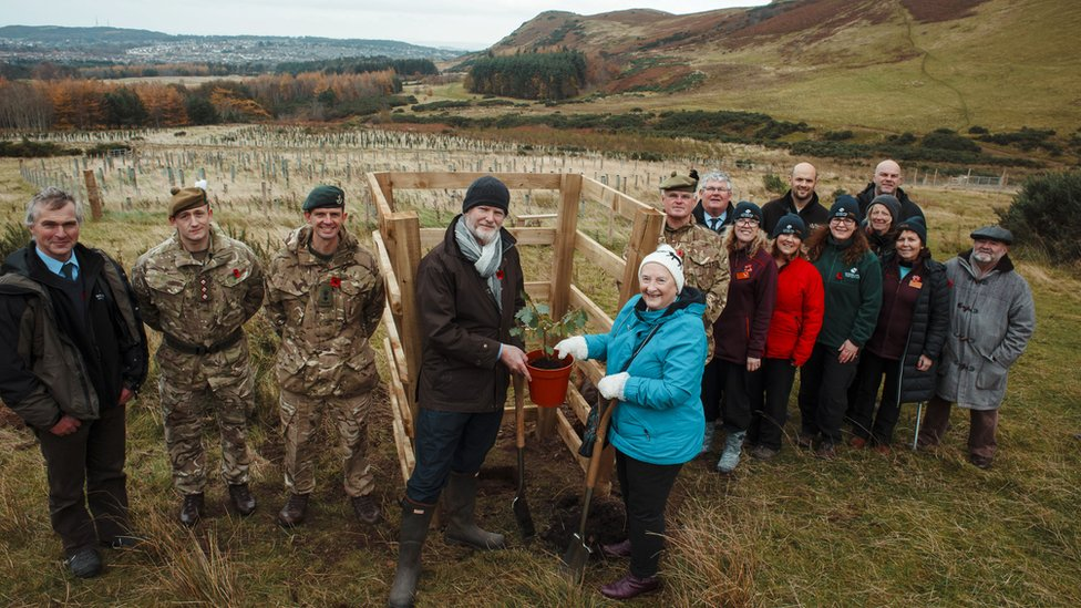 Final 'Tree from the Trenches' planted in Edinburgh memorial wood | BBC