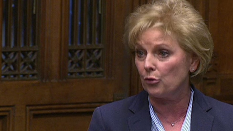 Brexit debate: Soubry says PM putting Tory interests first