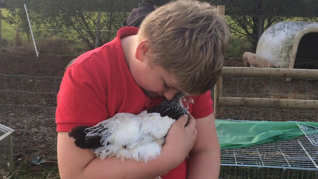 A 12-year-old boy with Tourette's Syndrome finds animals stop his tics