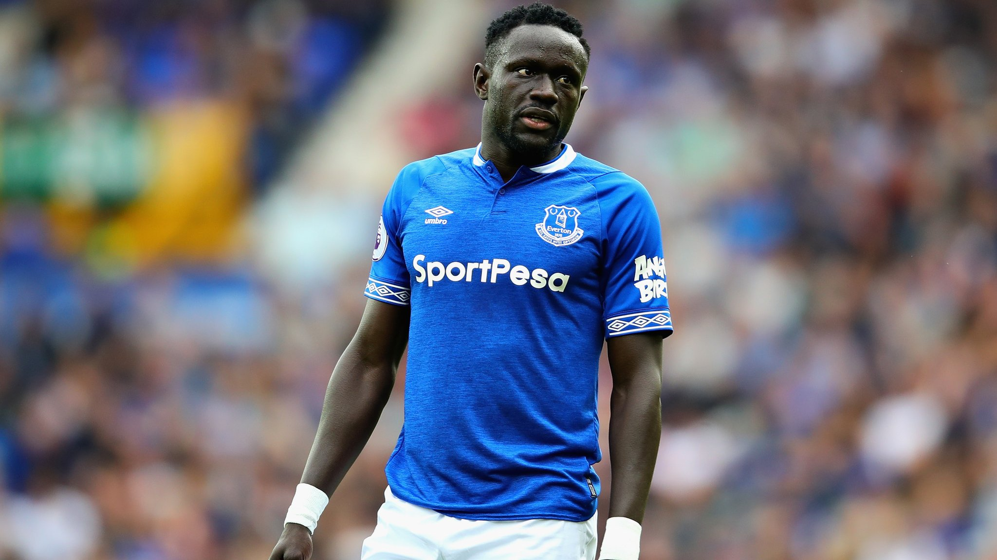 Oumar Niasse: Cardiff City target Everton forward on loan