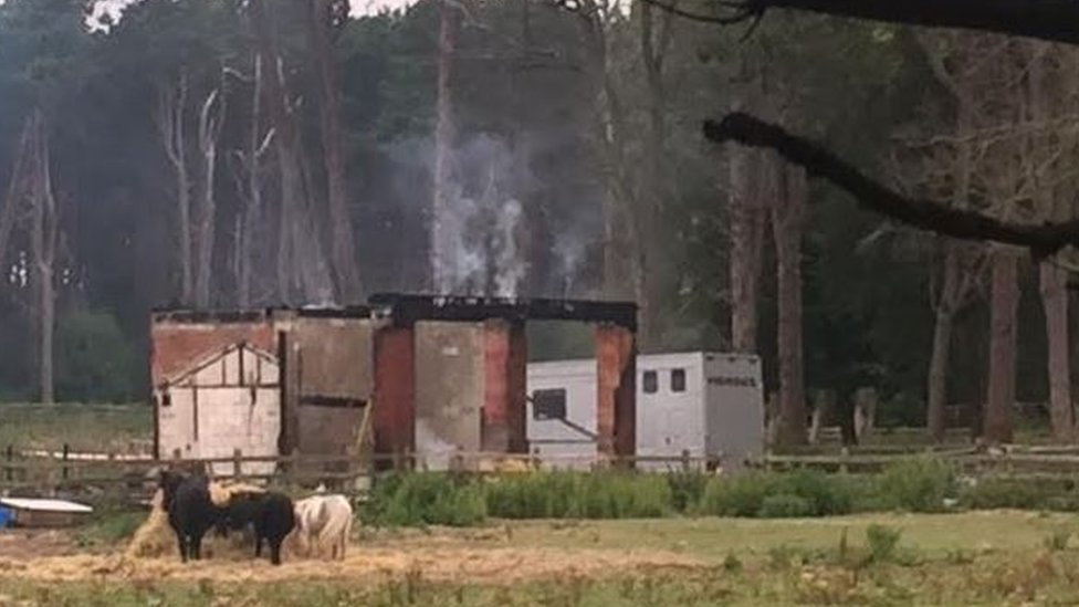 <![CDATA['Fridge electrical fault' caused Formby fatal stables fire]]>