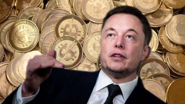 Elon Musk says Twitter blocked him after Bitcoin tweet