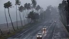 Strong winds cause large palm trees to sway on either side of a highway beneath grey, gloomy skies. Several vehicles can be seen