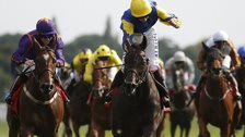 Litigant wins the Ebor Handicap