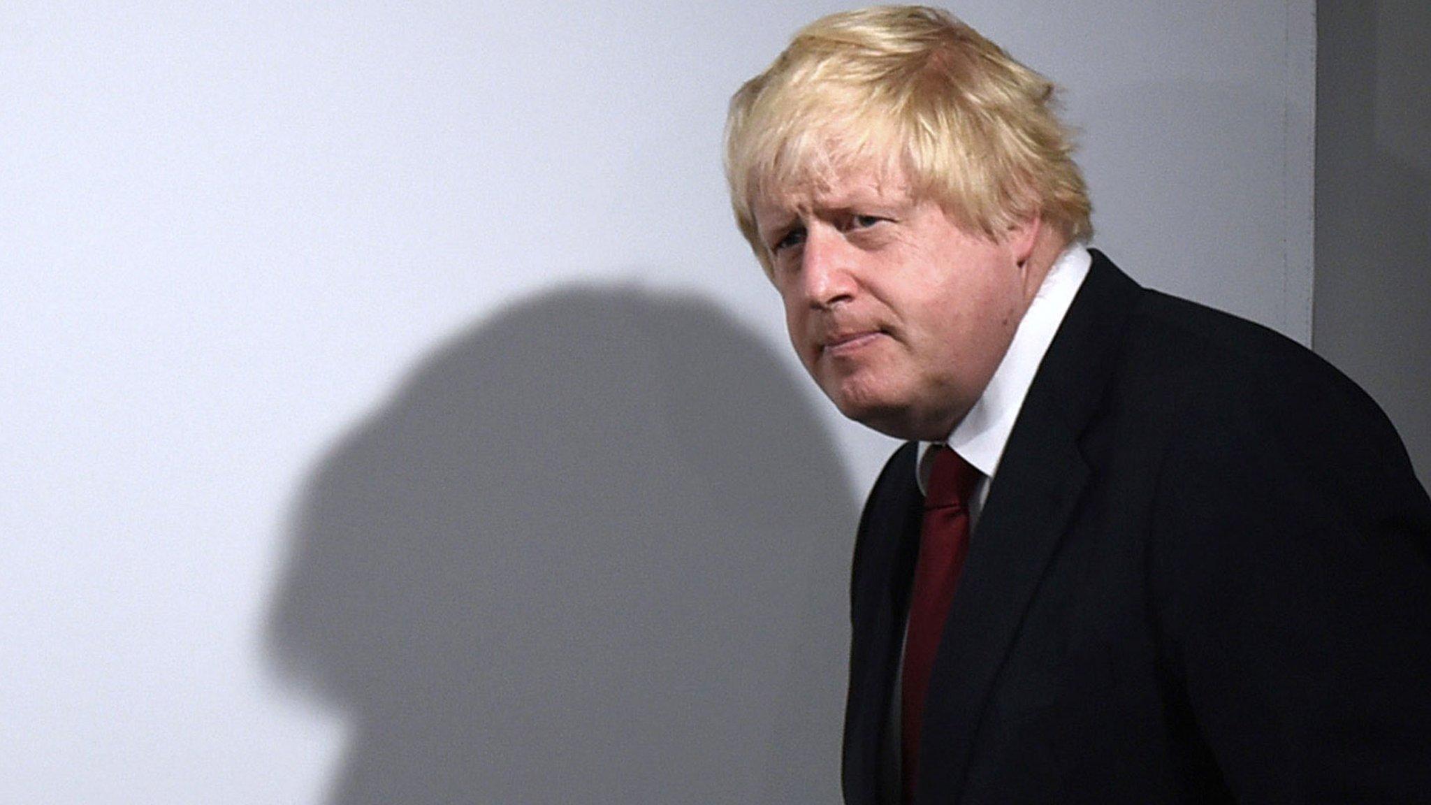 Johnson pledges EU co-operation after referendum result