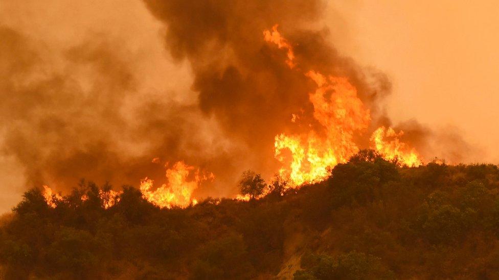 Existen 14 grandes incendios forestales en California