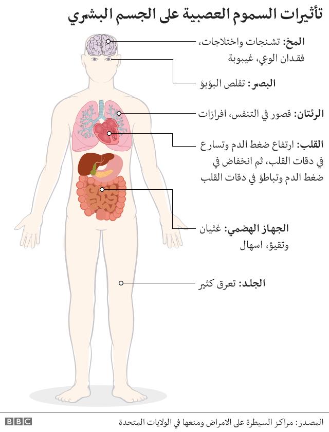 رسم يوضح تأثير عنصر الأعصاب على الجسم