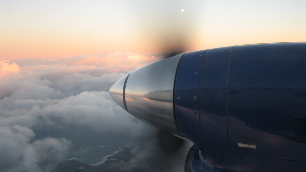 Loganair flight abandoned after bird strike