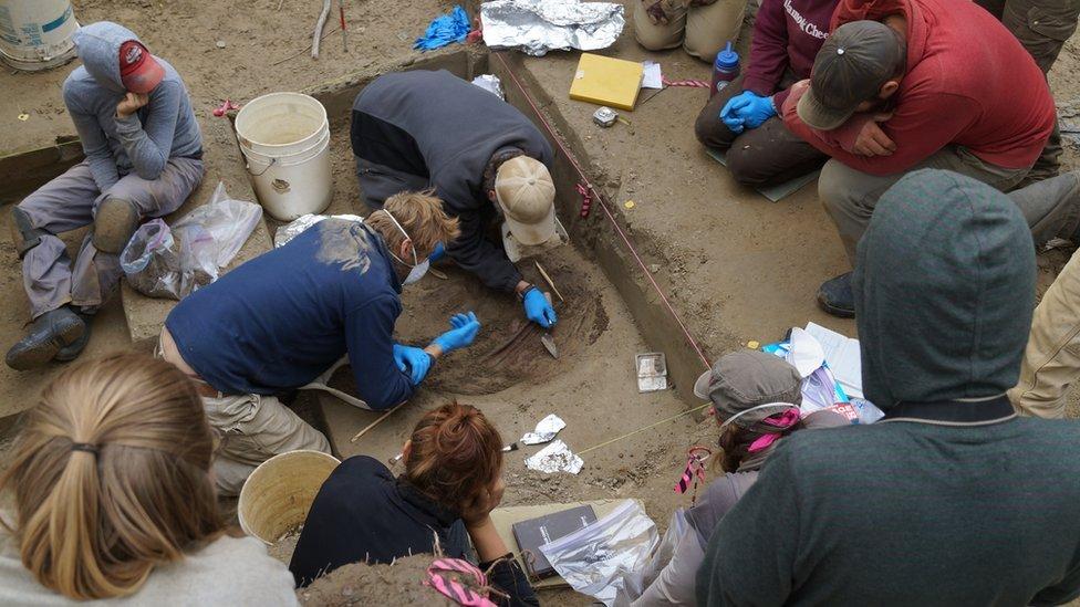 Excavaciones en Upward Sun River, Alaska. Foto: AFP/Nature/Universidad de Alaska Fairbanks/Ben Potter.