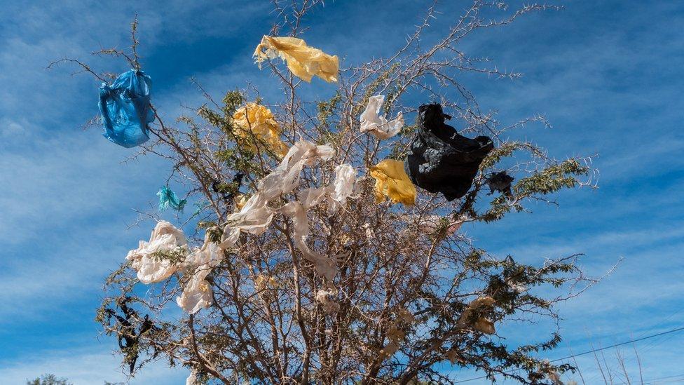 Is Chile's plastic bag ban a rubbish idea?