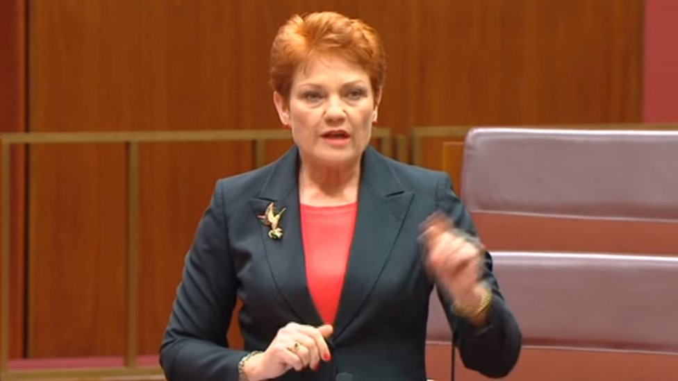 Australian politician criticised for remarks about autism