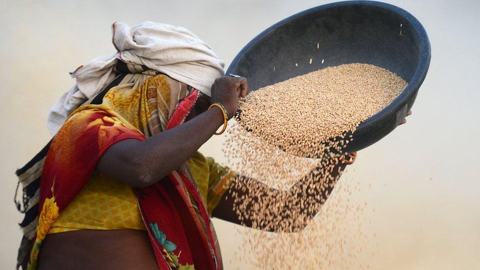 लोकसभा चुनाव 2019: क्या किसानों का क़र्ज़ पूरी तरह माफ़ हो गया?