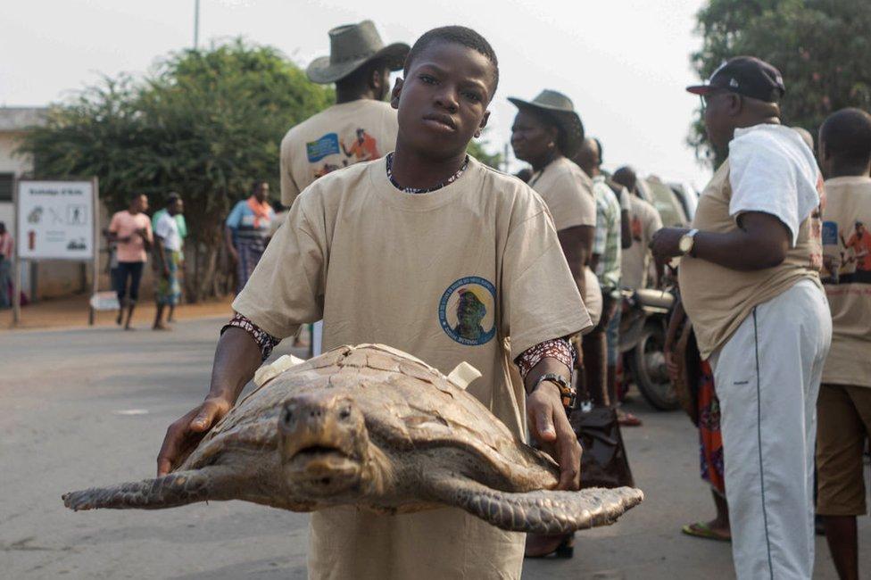 نشطاء في مجال المحافظة على البيئة بمناسبة اليوم الوطني لسلاحف البحر في بنين.
