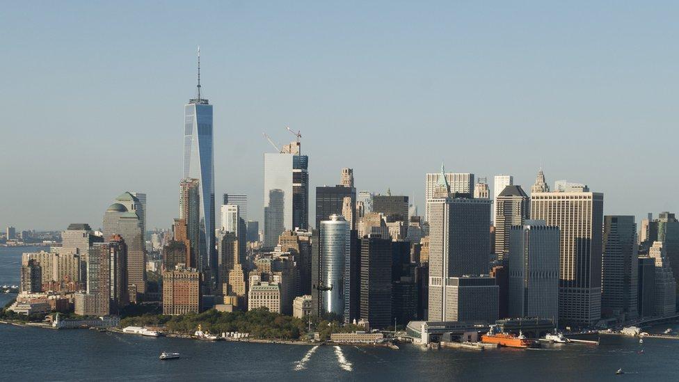 У Нью-Йорку затримали близнюків за підозрою у підготовці вибуху