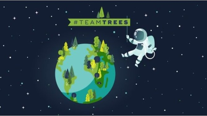 Teamtrees What Is Mrbeast S Tree Planting Mission All About