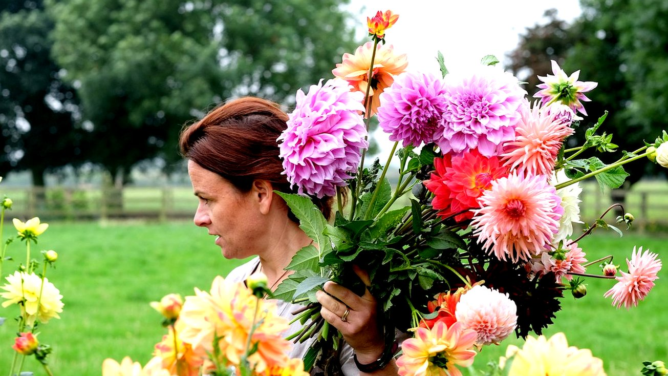 Celebrating the flower growers of Britain