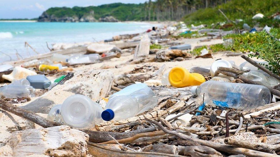 Ocean plastic tide 'violates the law'