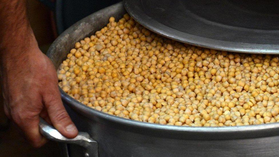 El garbanzo se descubrió hace 10.000 años en Turquía y se dice que fue una de las primeras legumbres en ser cultivada.