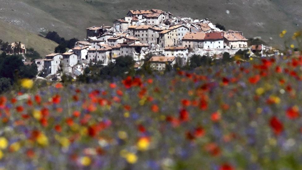 Edificios de Castelluccio vistos desde la planicie cubierta de amapolas rojas y scabiosas azules