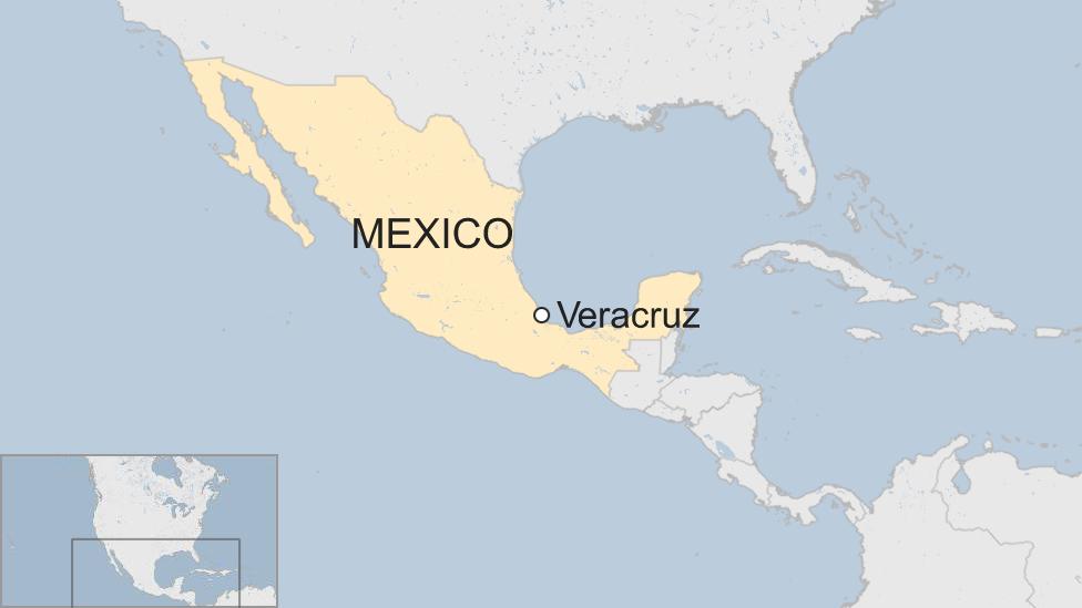 Mexico: Five human heads found on Veracruz taxi bonnet