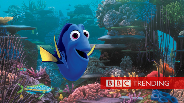Promotional image for the new Disney film Finding Dory. Image shows Dory the fish swimming amongst a colourful coral reef.