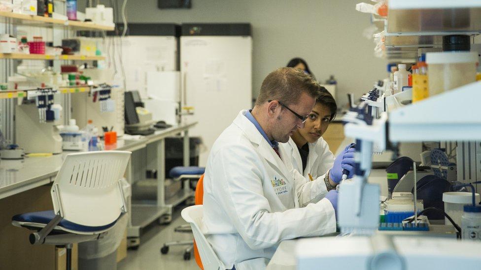 La apertura de puertas a la inmigración para trabajar en los campos científicos y tecnológicos aumentaría la productividad de EE.UU.