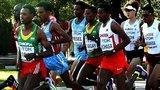 Runners competing in the race
