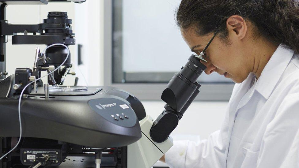 UK scientists edit DNA of human embryos