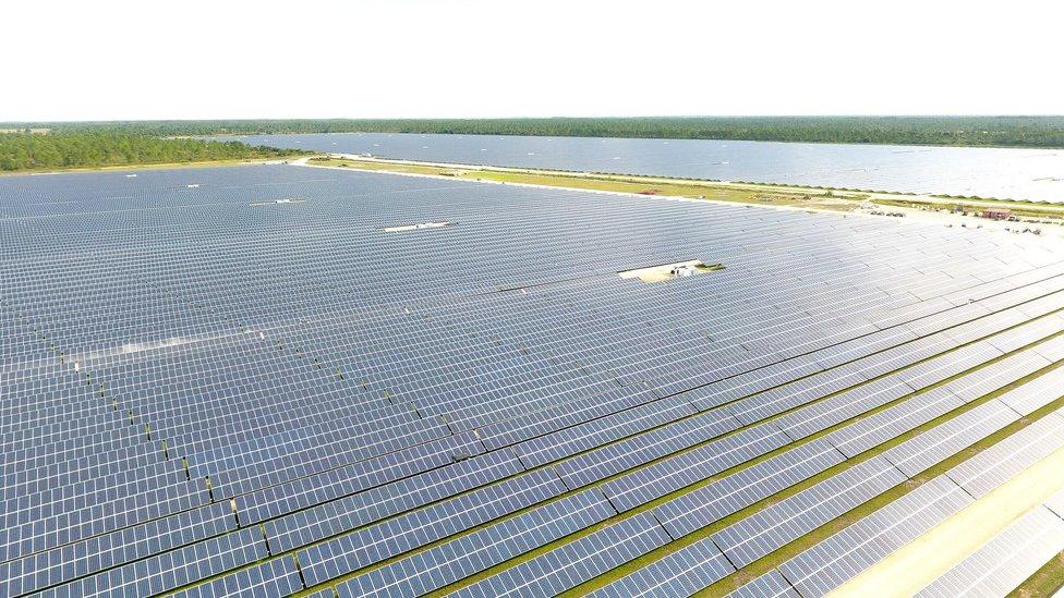 Paneles solares en Babcock Ranch