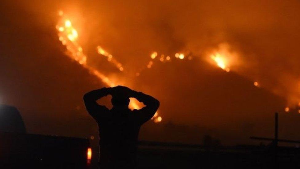 У Каліфорнії лютує пожежа: 90 тис. людей евакуйовані