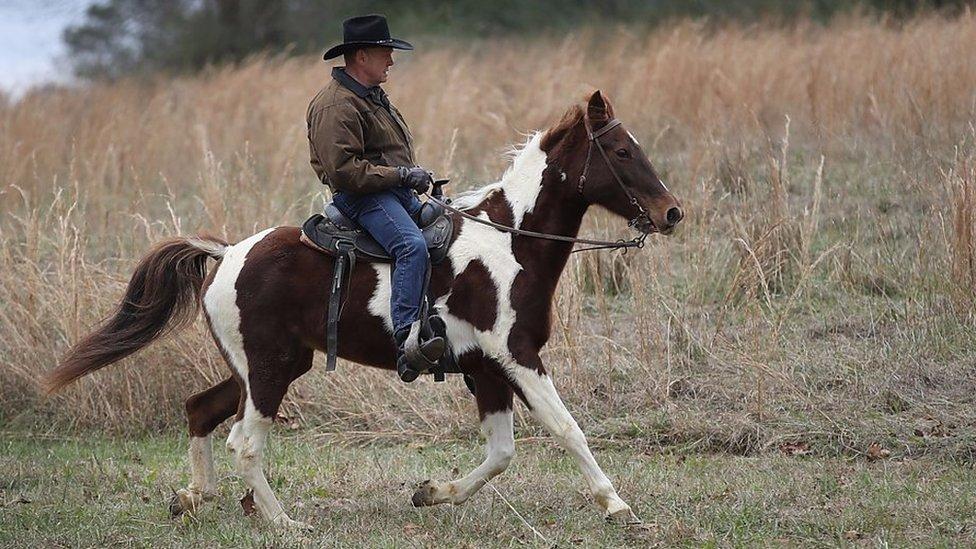 Roy Moore's skittish escape on horseback