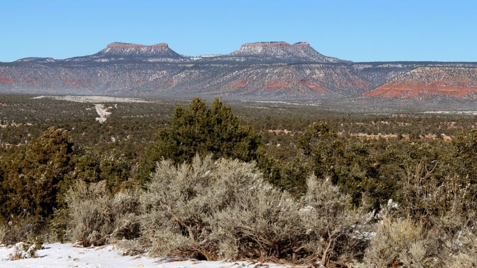 Federal land chief moves to shrink four national monuments