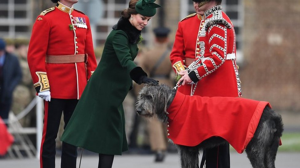 William and Kate brave snowy St Patrick's Day parade