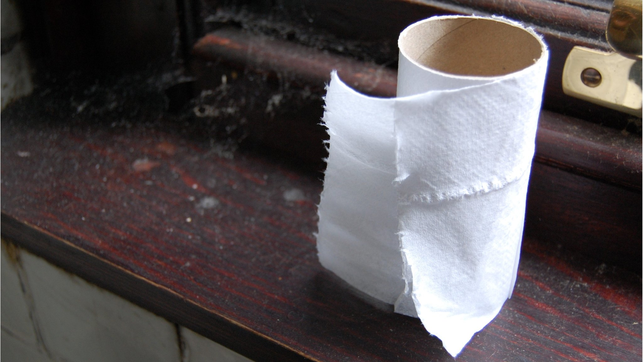 Maidenhead school asks parents to buy toilet roll