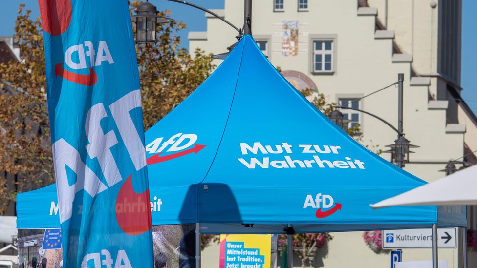 Germany's AfD sparks outcry at far-right child informer plan