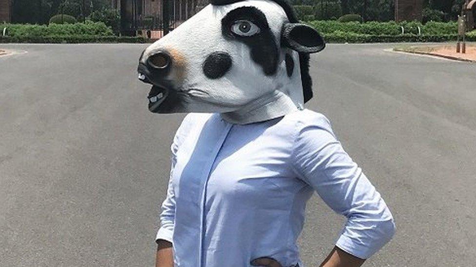 ये लड़की किसके लिए पहन रही है गाय का मुखौटा?