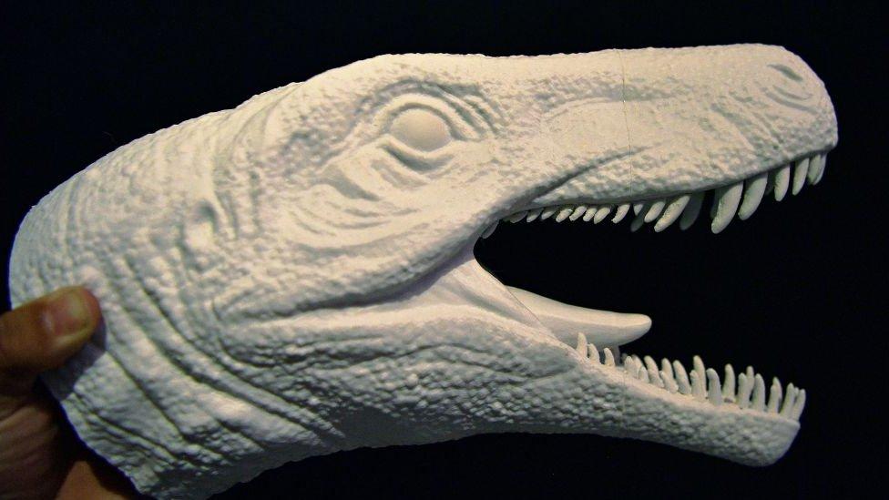 Como Era El Dinosaurio Mas Feroz Que El Tyrannosaurus Rex Cuyos Restos Se Encontraron En Sudamerica Bbc News Mundo Español inglés portugués francés italiano catalán. como era el dinosaurio mas feroz que el tyrannosaurus rex cuyos restos se encontraron en sudamerica bbc news mundo