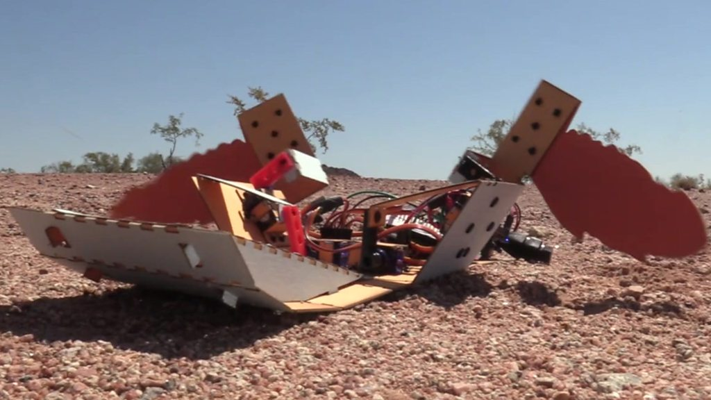 C-Turtle: The landmine-detecting robot 'turtle'