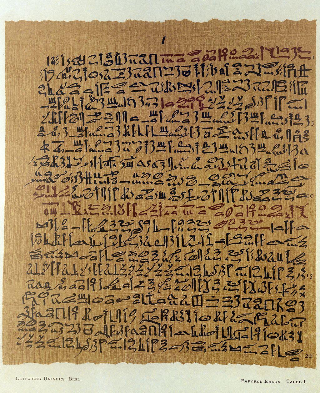 Reproducción de 1875 del de Papiro Ebers. (Foto: Welcome Images vía Wikimedia Commons)