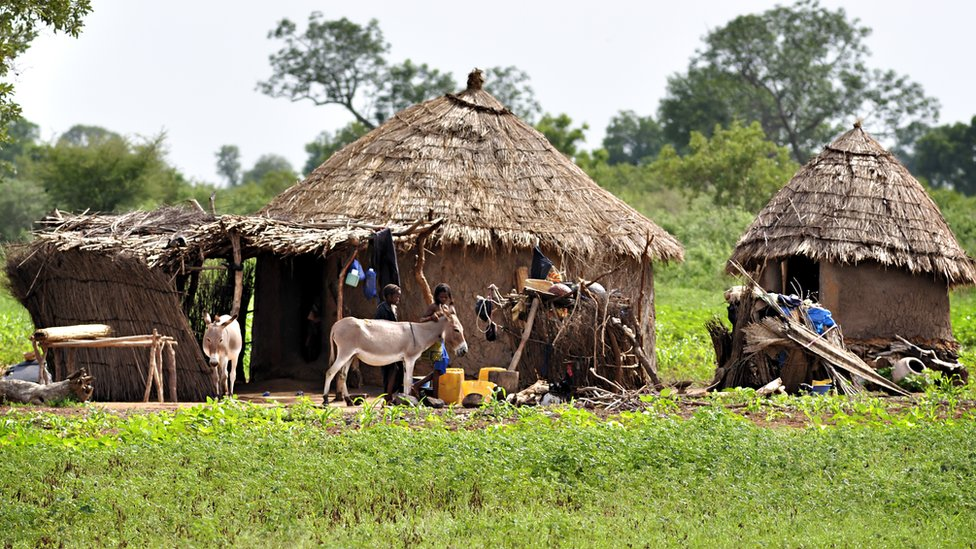 Dozens of Mali villagers killed by gunmen