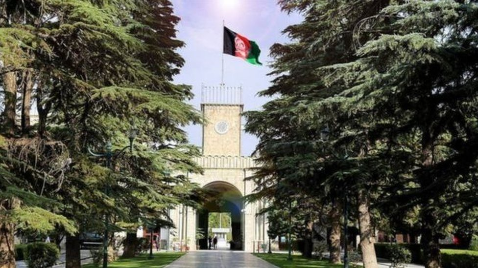 98844274 afghan