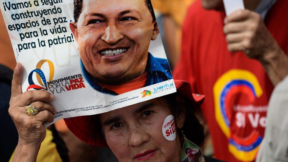 Manifestante oficialista