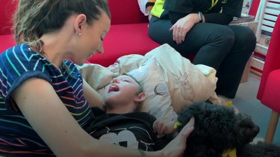 Influx of dog videos for terminally ill boy after Facebook post