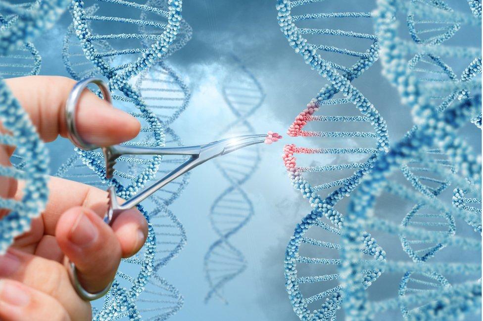 Ilustración de unas tijeras cortando ADN.