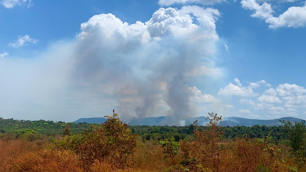 Amazon: In the cross-hairs of coronavirus and forest fires thumbnail